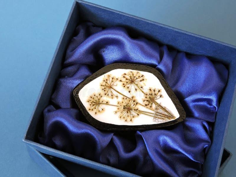Broche en caja de regalo imagen de archivo