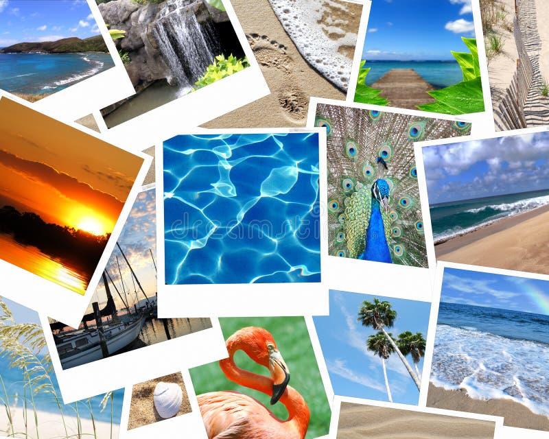 Broches de presión de las vacaciones imagen de archivo