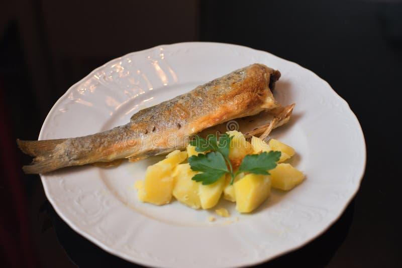 Brochet rôti de mer de morue avec les poptatoes bouillis et persil sur la fin rustical blanche de plat  photos stock