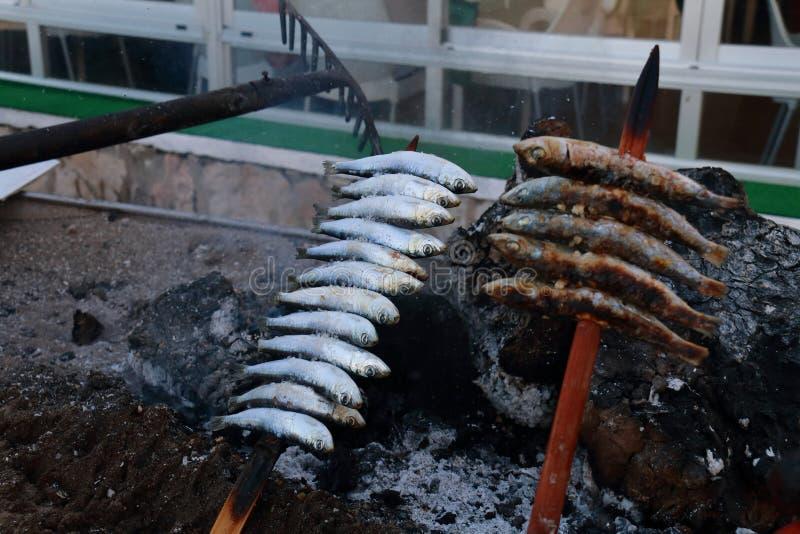 Brochette des sardines rôtissant dans les braises du bois de chauffage, nourriture typique des côtes de l'Andalousie images libres de droits