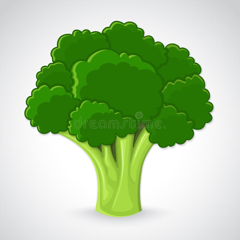 Brocoli artistique illustration stock