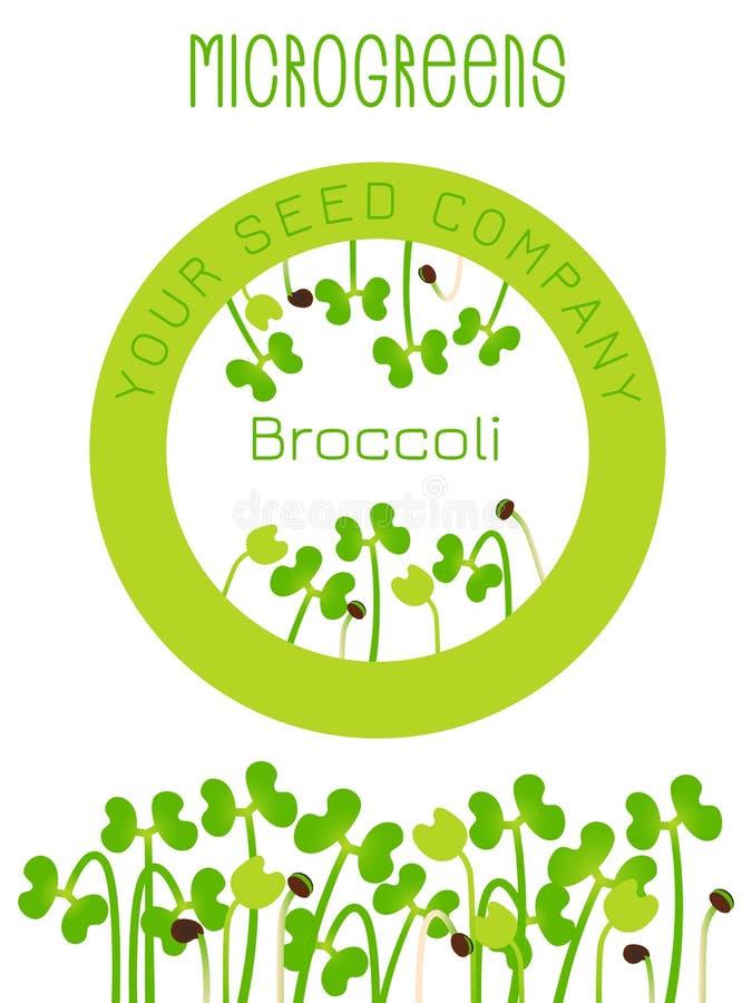 Brocoli de Microgreens Conception d'emballage de graine, élément rond au centre Graines de germination d'une usine illustration stock