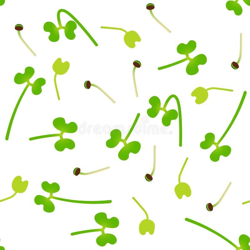 Brocoli de Microgreens Graines de germination d'une usine Configuration sans joint Supplément de vitamine, nourriture de vegan illustration de vecteur