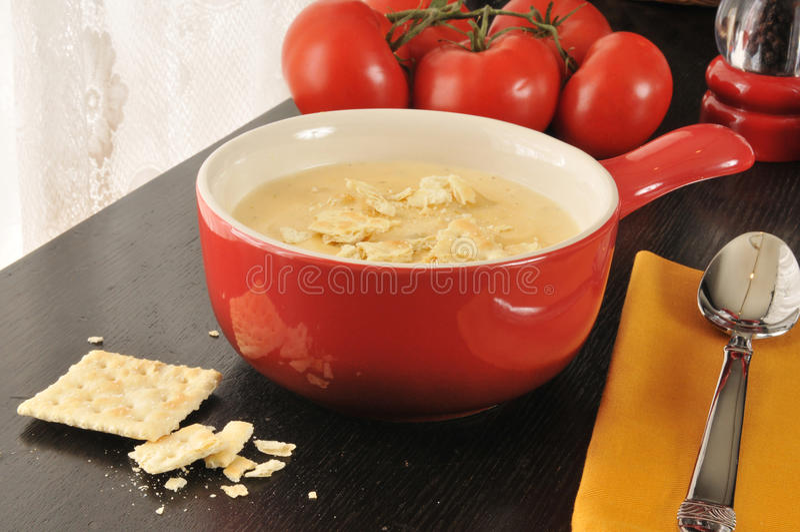 Brocoli, ragout de fromage image stock