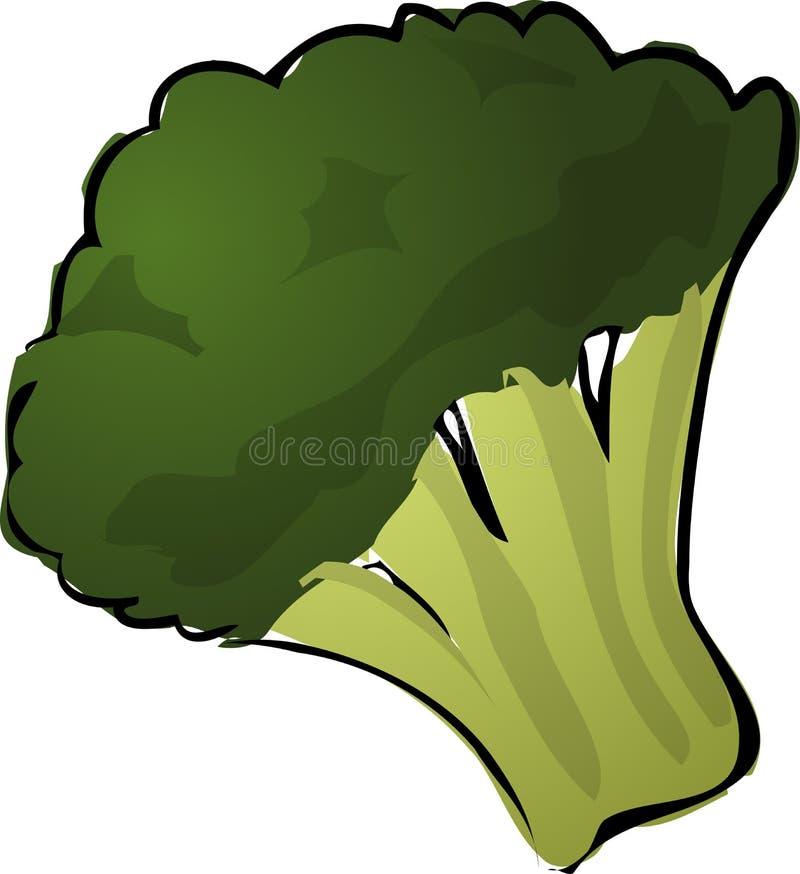Brocolli vector illustratie