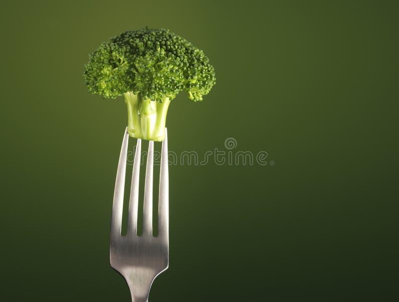 Brocolli royalty free stock photo