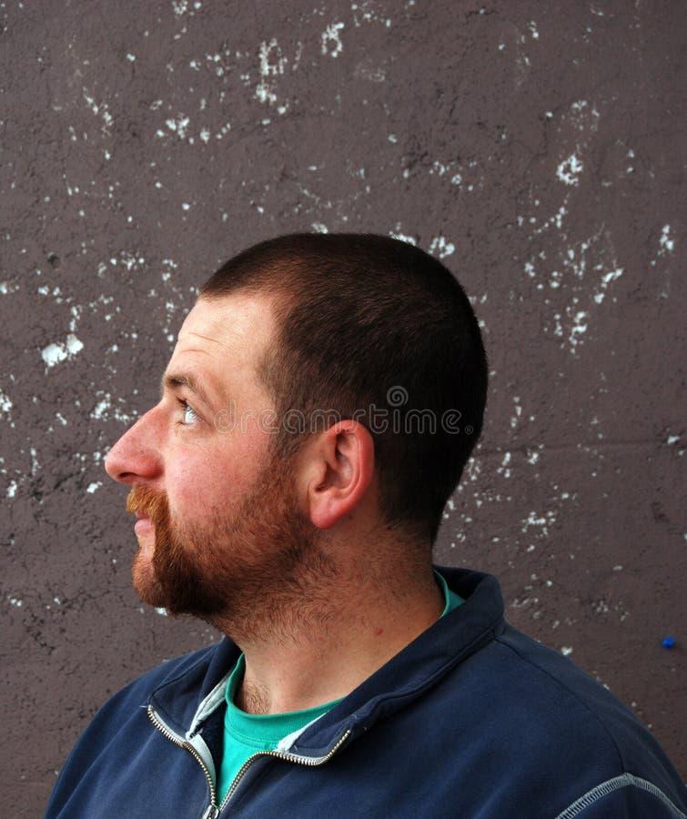 Broda mężczyzna profil obraz royalty free