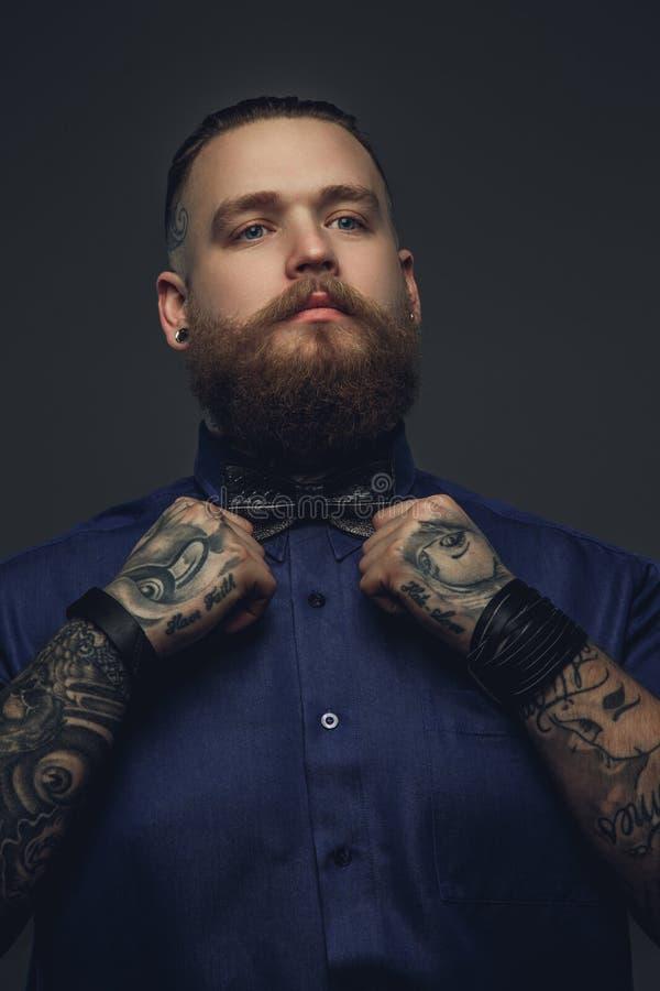 Brodata samiec w błękitnym łęku krawacie i koszula zdjęcia stock