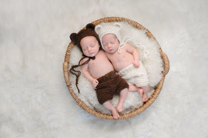 Broederlijke Tweelingbabybroer en Zuster in Beerhoeden royalty-vrije stock afbeeldingen