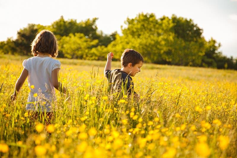 Broer en zuster op een gebied royalty-vrije stock foto