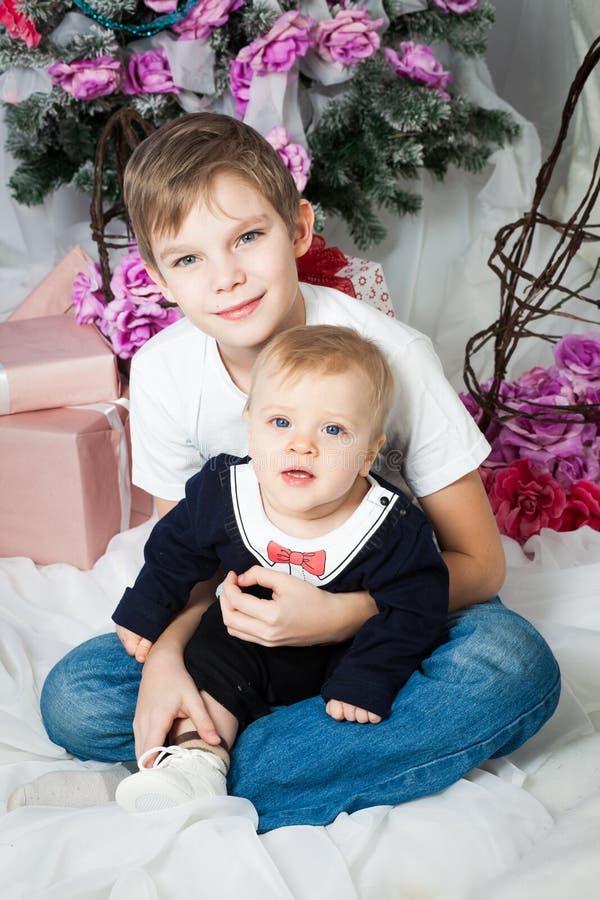 Broers met Kerstmisboom stock afbeeldingen