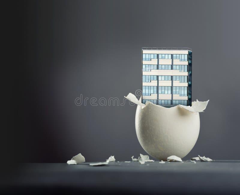 broken ägg arkivfoton