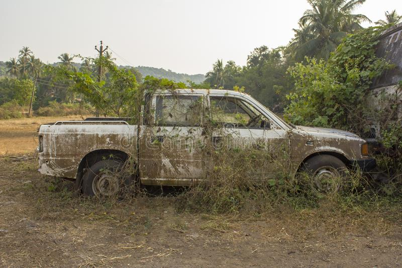 broken abandoned dirty white Indian pickup overgrown with plants green ivy and moss on the stock image
