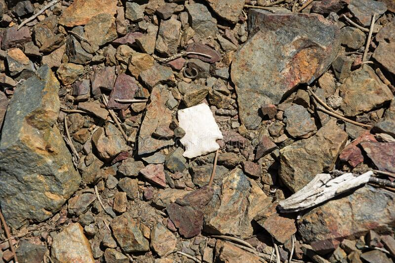 Broken Arrowhead On The Ground royalty free stock photography