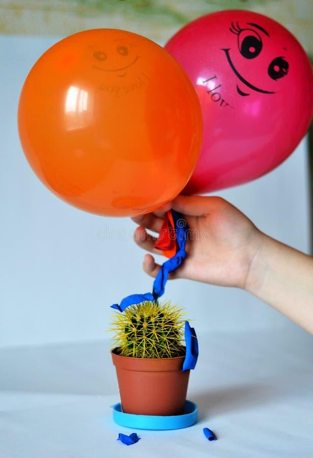 The Broken Ball. Carelessness burst the ball about cactus cactus royalty free stock photos