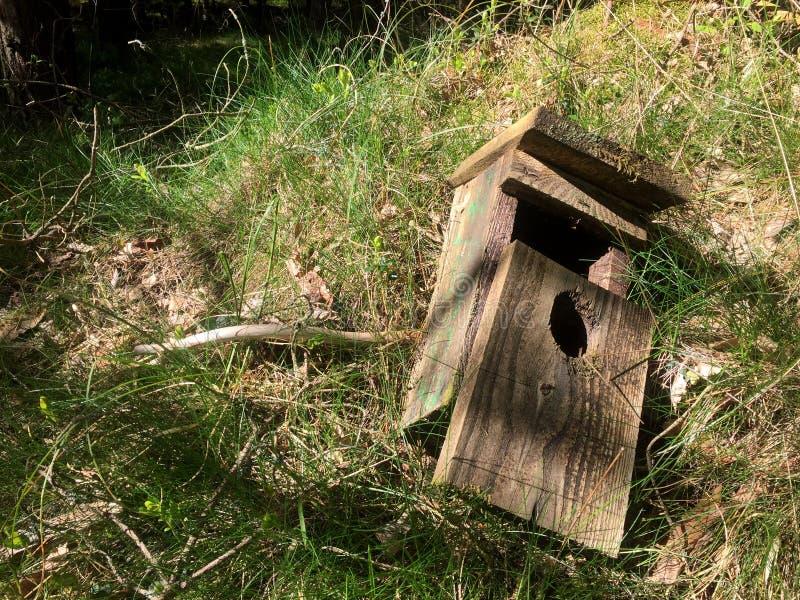 Broken bird house on forest ground stock photos