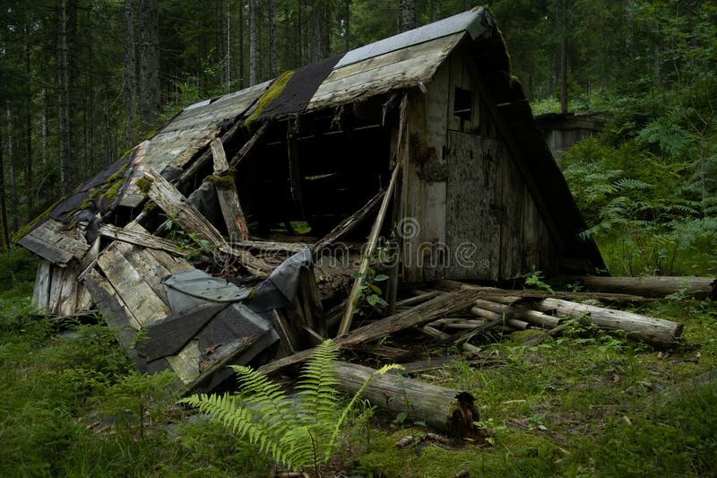 Broken Cabin In The Woods. Broken down cabin in the middel of the Schwarzwald Forest stock photos