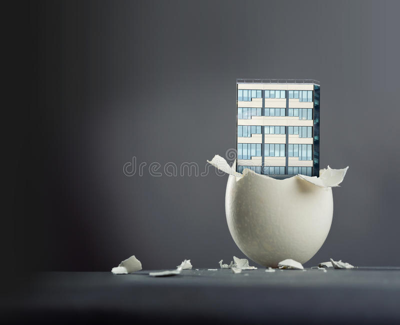Broken egg stock photos