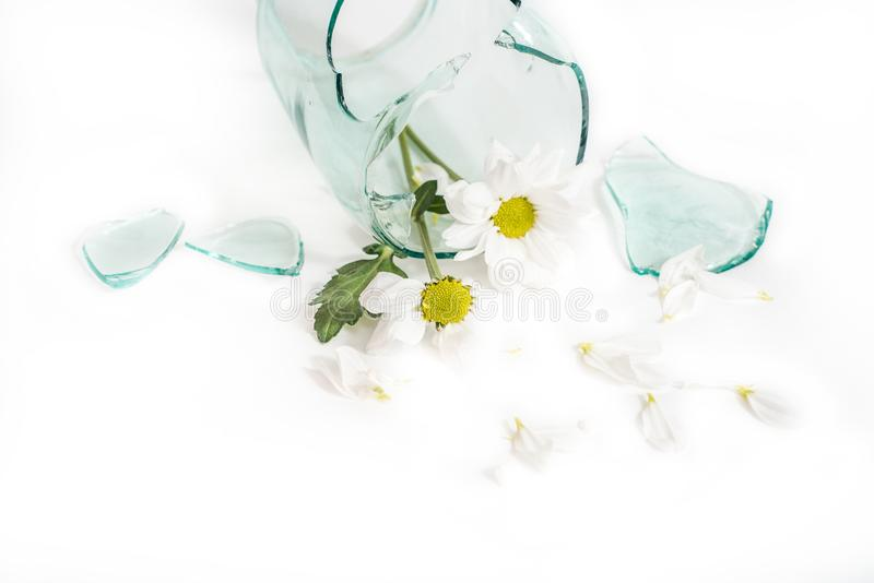 Broken glass, a flower in a broken vase. The concept of unhappy love, grief and tears.  royalty free stock image