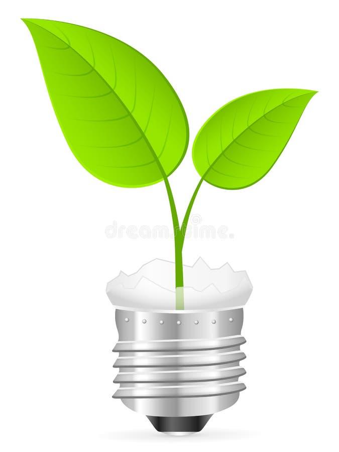 Broken light bulb and leaf. Broken light bulb with leaf on a white background vector illustration
