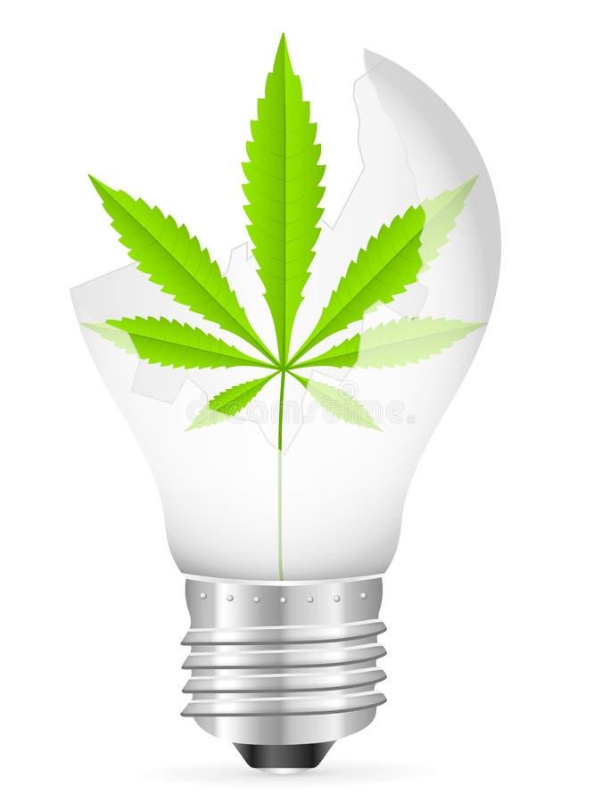 Broken light bulb and marijuana leaf. Broken light bulb with marijuana leaf on a white background royalty free illustration