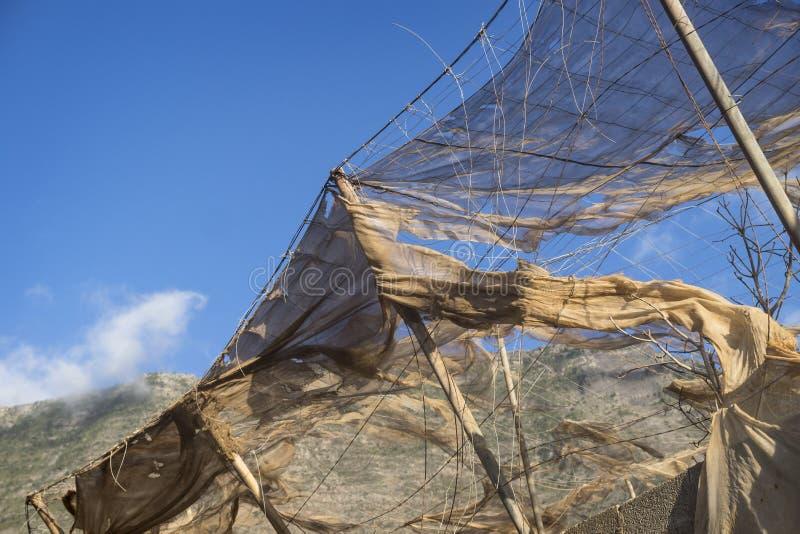 Broken nets. Abandoned banana plantation, El Hierro stock photo