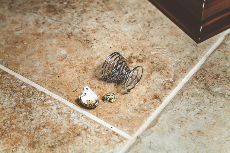 Broken Egg Shell Lies On Electric Stove Plate Cakes Stock
