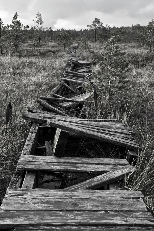 Download Broken Road In A Marsh In Estonia Stock Image - Image: 12237547
