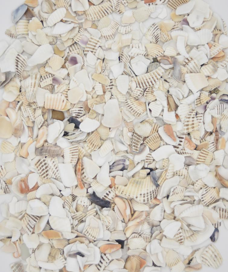 Broken shells and pebbles background stock photo