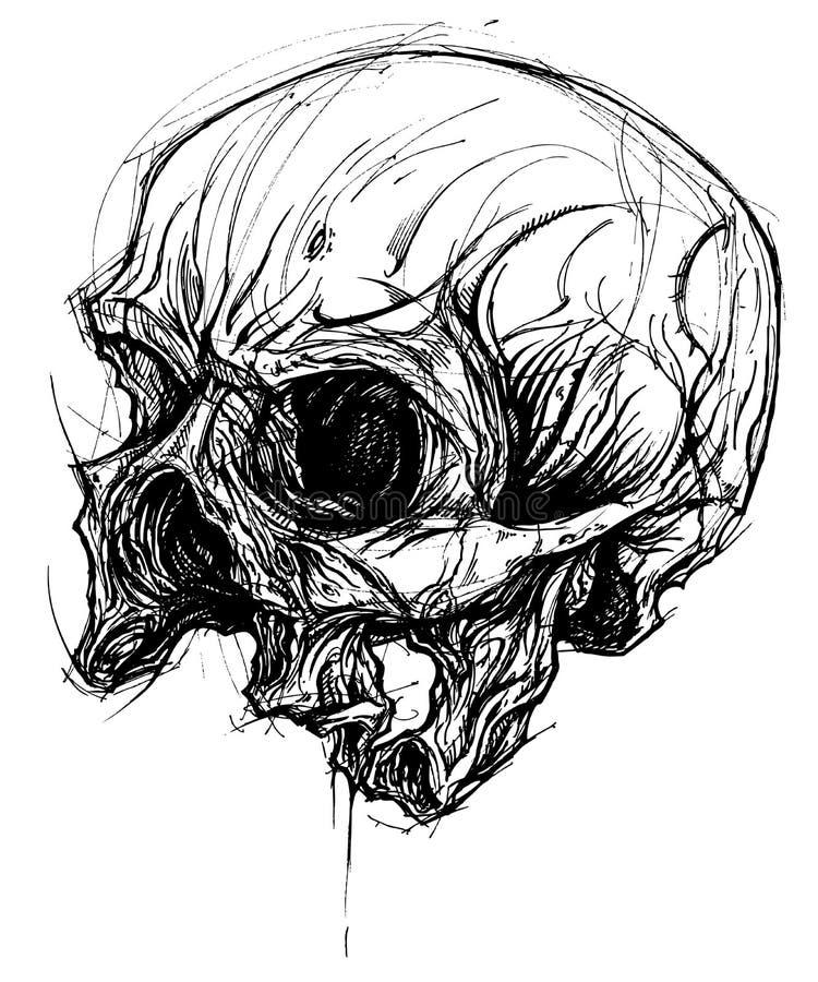 Broken Skull Drawing line work vector vector illustration