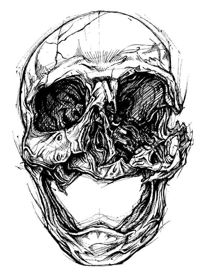 Broken Skull Drawing line work vector stock illustration