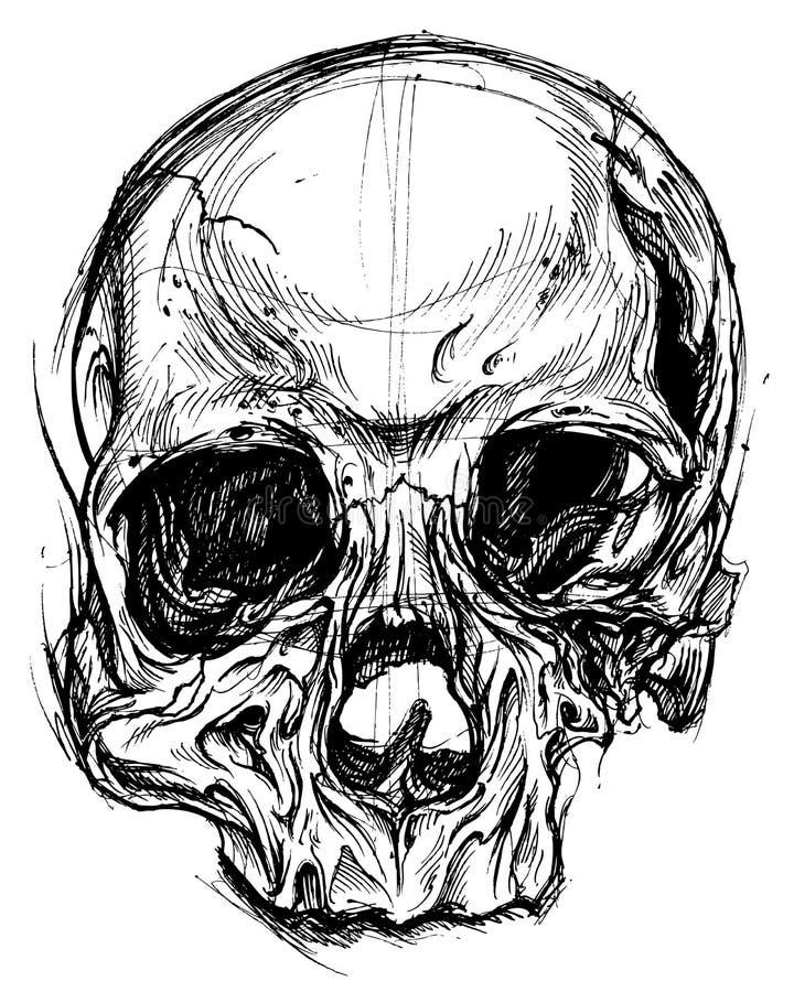 Line Art Skull : Broken skull drawing line work vector stock image