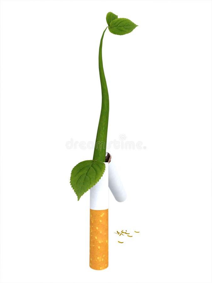 broken spira för cigarettväxt royaltyfri illustrationer