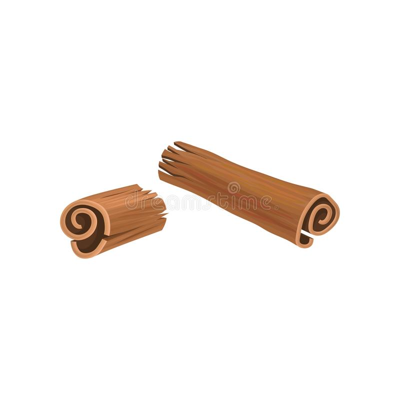 Broken stick of cinnamon. Aromatic spice used in variety of dishes, drinks and sweets. Spicy seasoning. Cuisine theme. Graphic decorative element. Detailed stock illustration