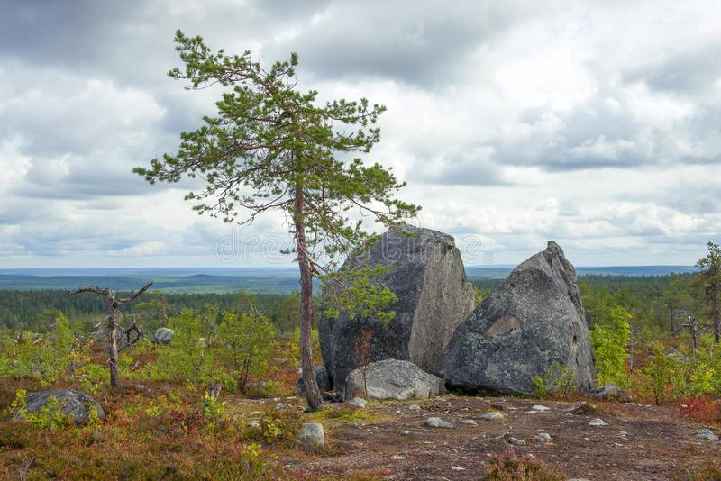 Broken stone on top of the Vottovaara mountain. Karelia. Russia stock images