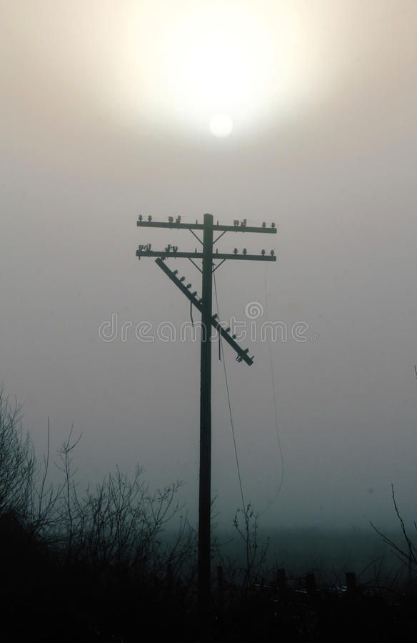 Broken Telephone Pole. Lines dangle from a broken telephone pole after a severe storm royalty free stock photo