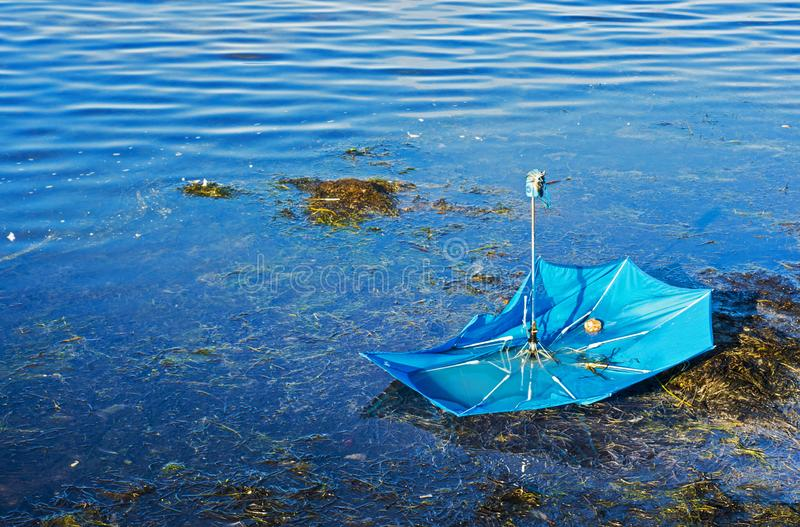 Broken umbrella in the waters of the Baltic Sea royalty free stock photos