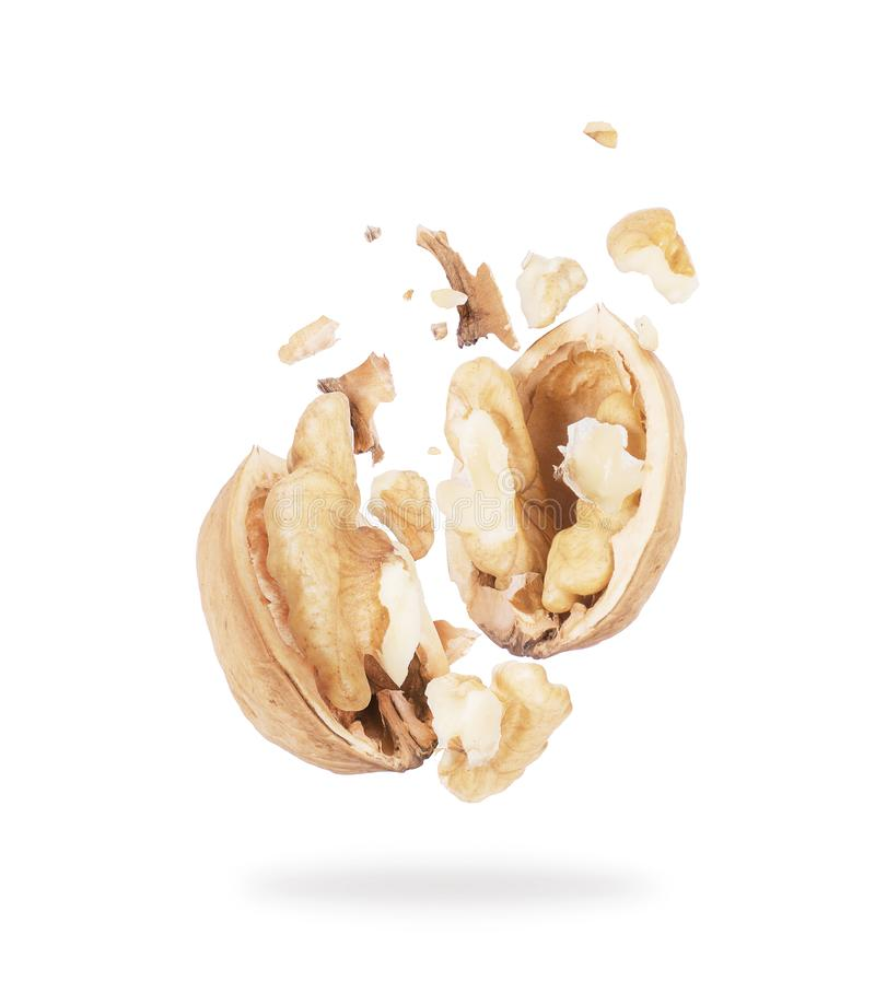 Broken walnut hovering in the air close-up on a white background.  stock images