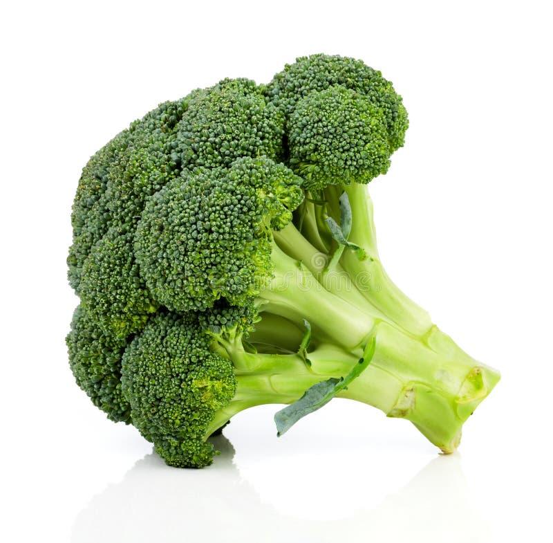 Brokkoli auf weißem Hintergrund stockfotografie