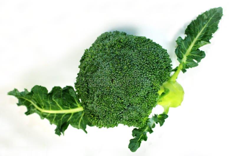 Brokkoli mit Blättern stockfotografie