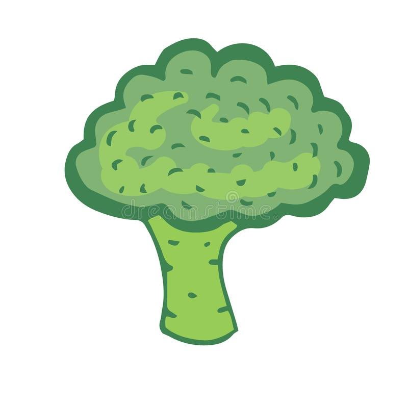 Brokkoli-Vektor-Ikone Gemüseaufkleber Bestandteile für Rezeptbuch lizenzfreie abbildung