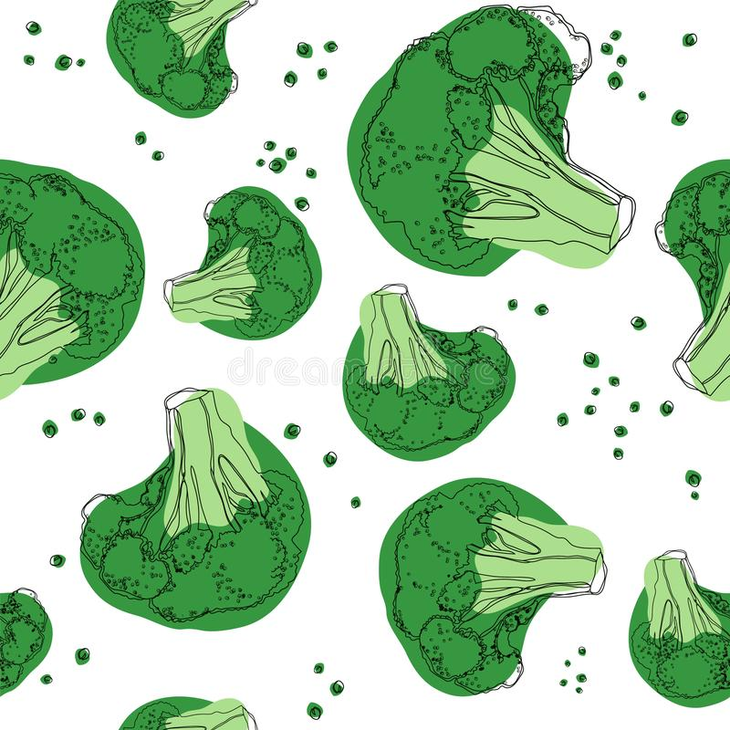 Brokułu bezszwowy wzór na białym tle również zwrócić corel ilustracji wektora obrazy stock