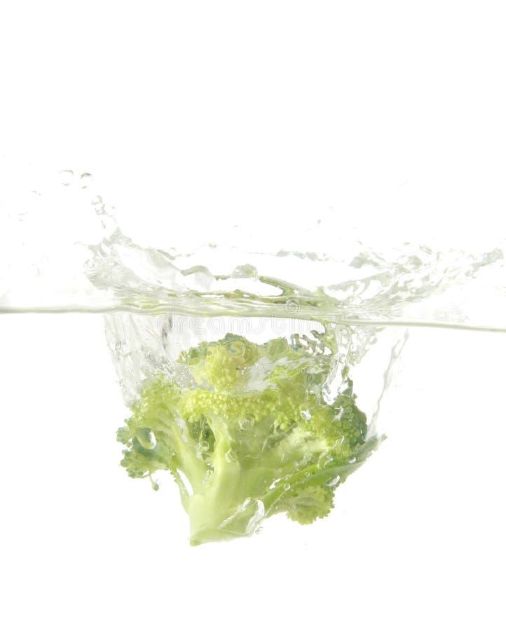 brokułu plusk zdjęcia stock