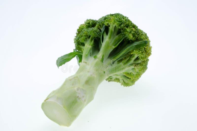 Brokułu warzywo odizolowywający na białym tle obraz royalty free