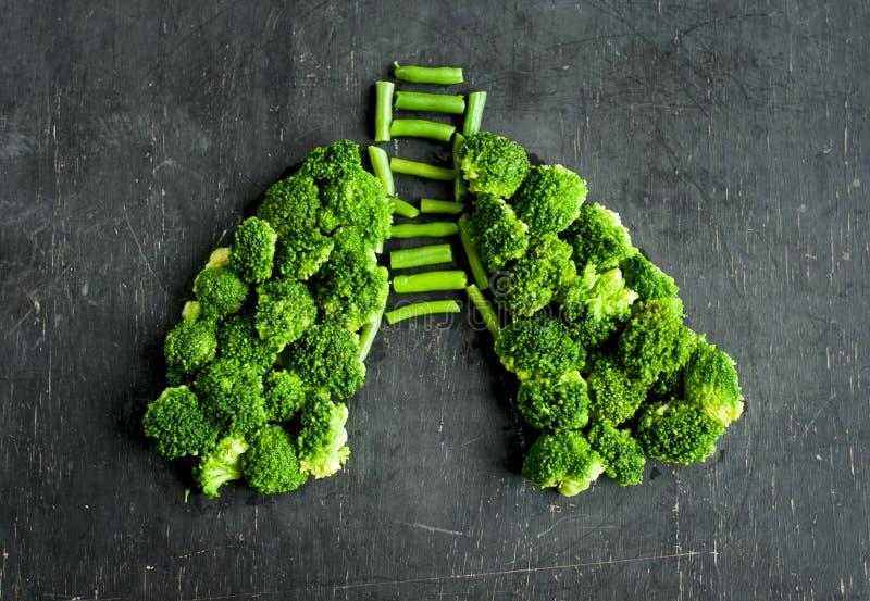 Brokuły i asparagus kłaść out w postaci ludzkich płuc fotografia stock