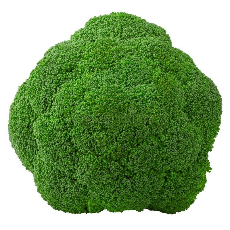brokuły, odizolowywający na białym tle, ścinek ścieżka, pełna głębia pole obraz royalty free
