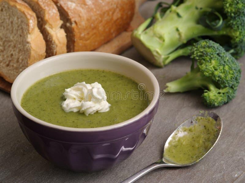 Brokuły zupni i chlebowi zdjęcie royalty free