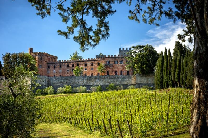 Brolio kasztel i niedalecy winnicy Kasztel lokalizuje w produkcja terenie sławny Chianti Classico wino Tuscany, fotografia royalty free