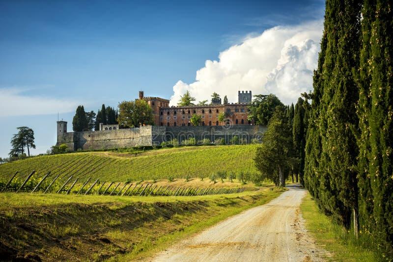 Broliokasteel en de nabijgelegen wijngaarden Het Kasteel wordt gevestigd op het productiegebied van de beroemde wijn van Chiantic royalty-vrije stock fotografie