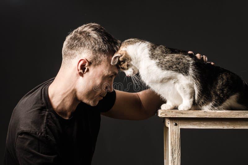 Bromance, Freundschaft, Mann und Katze, berührte ihre Stirnen lizenzfreies stockbild